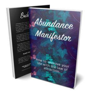 Abundance Manifestor e-cover