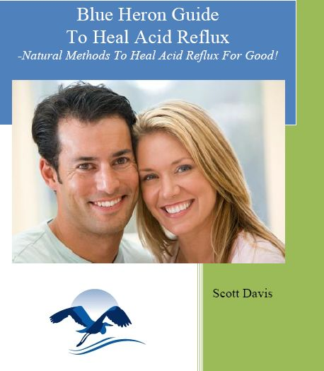 The Acid Reflux Strategy e-cover